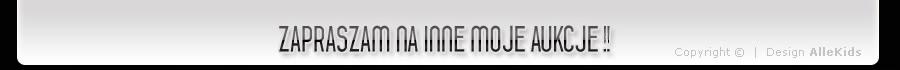 REINFORCEMENT (BEAMS) BUMPER SEAT ALTEA REAR