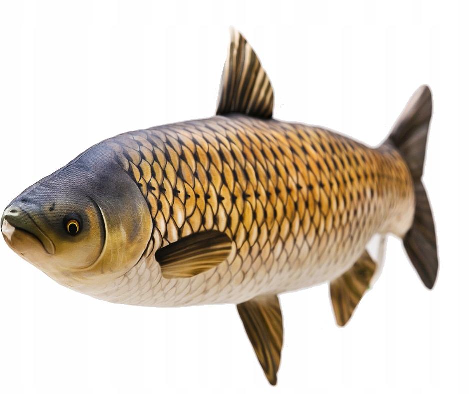 GABY vankúšik na hračky pre ryby AMUR obrie 105cm