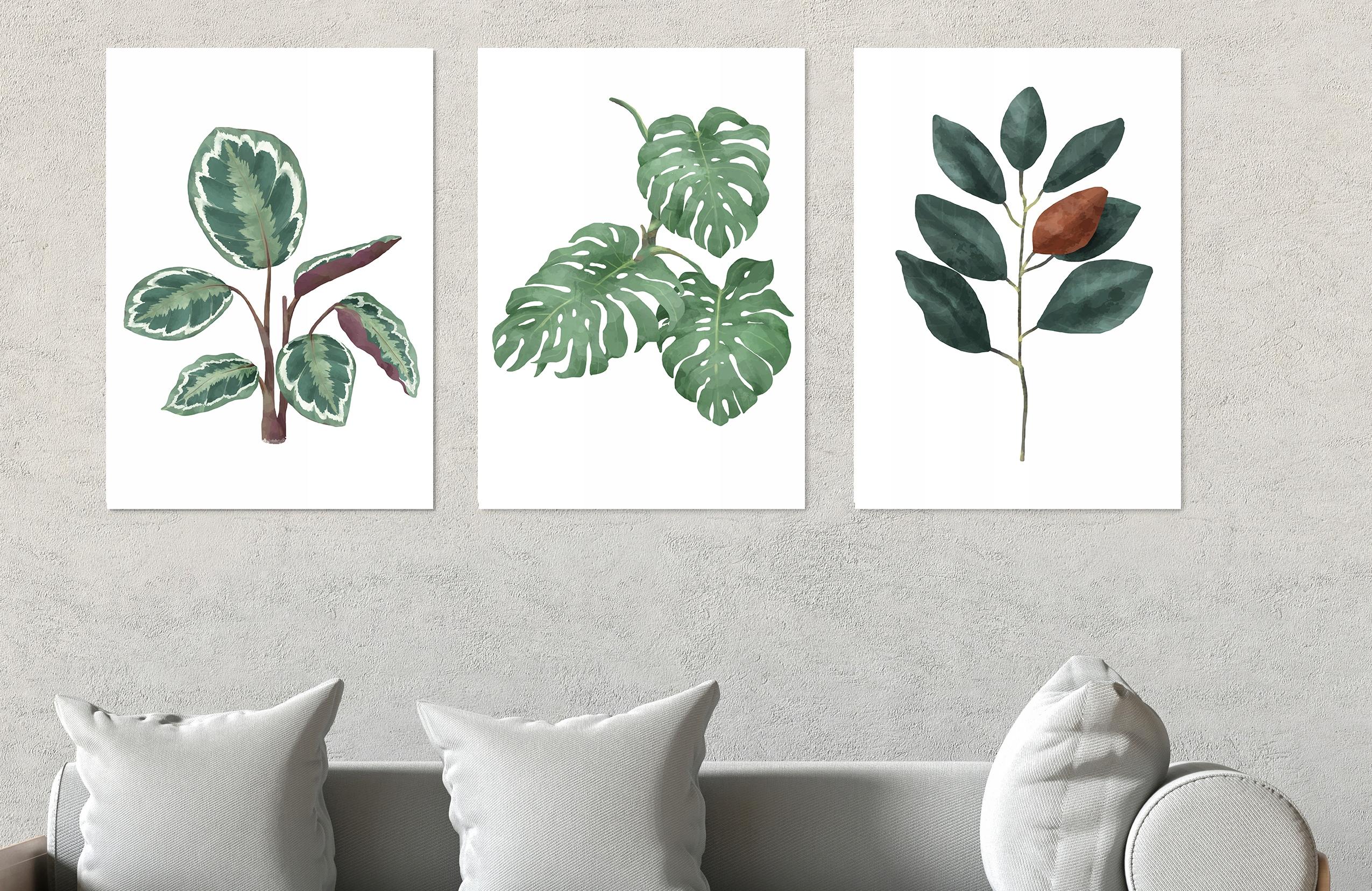 Grafika Plakat A4ramka Rośliny Liść Skandynawski