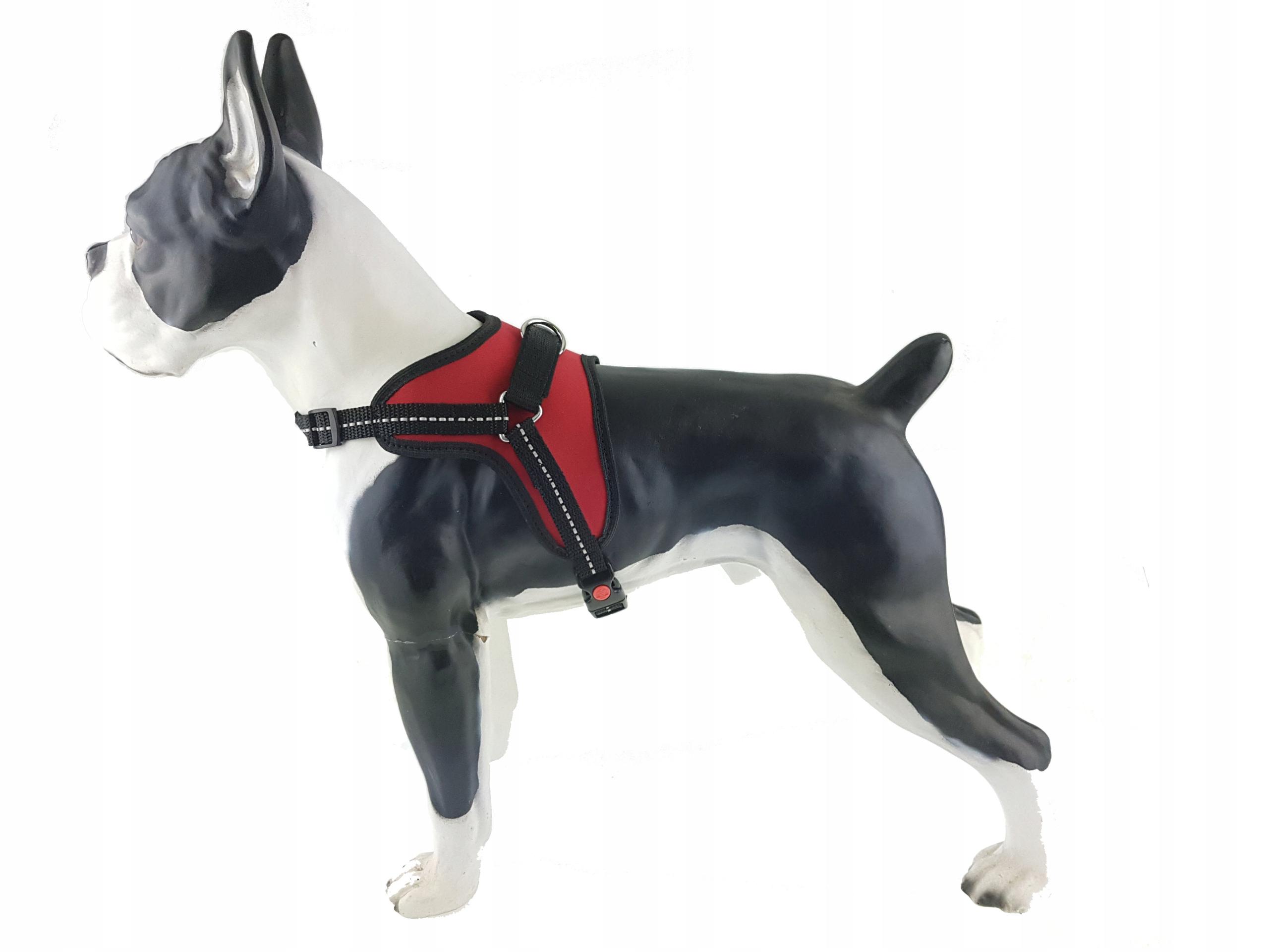 nowe obrazy szczegółowe obrazy całkowicie stylowy szelki dla psa Champion sport 60cm julius uprząż
