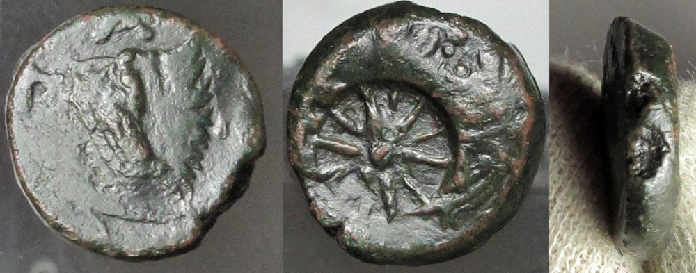 N165.Pantikapaion , brąz, 294-284 pne