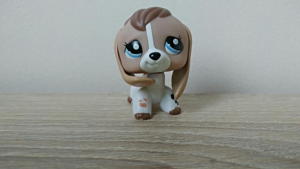 Lps Littlest Pet Shop 2207 Beagle Pies Piesek 7017225296