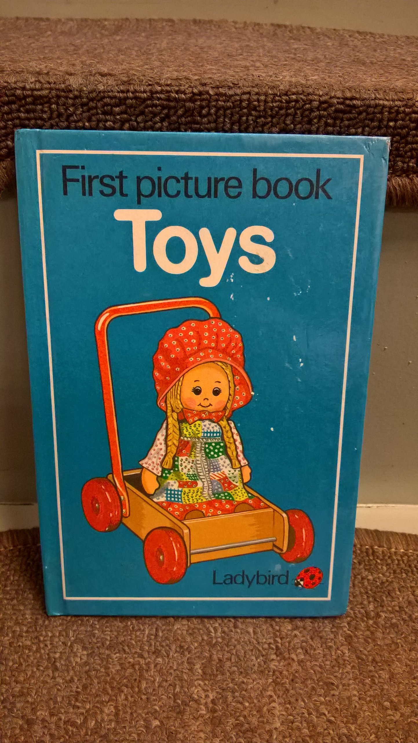 Ladybird First Picture Book - TOYS