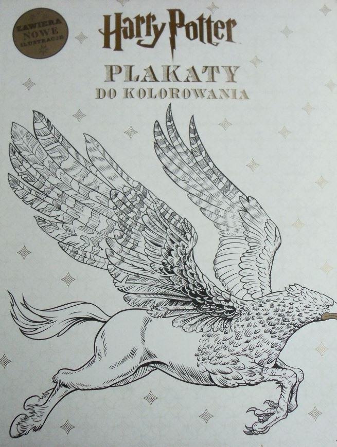 Harry Potter Plakaty Do Kolorowania 7118894812 Oficjalne