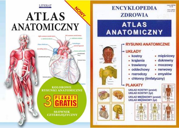 Zestaw 2 X Atlas Anatomiczny Plakaty Anatomia