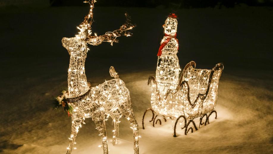 Jak Udekorowac Ogrod Na Swieta Bozego Narodzenia 2017 Allegro Pl
