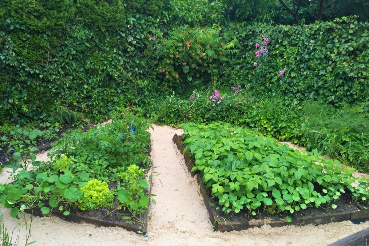 chodníky v záhrade 2