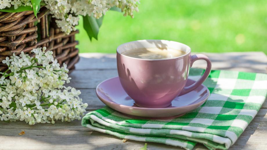 Zielona Kawa Wspomaga Odchudzanie Allegro Pl