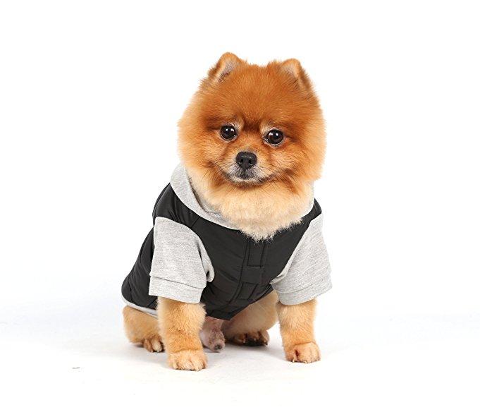 DoggyDolly Kurtka z kapturem, czarnoszara