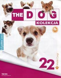 Dog Kolekcja 22 Corgi Maskotka 7739639517 Oficjalne Archiwum Allegro