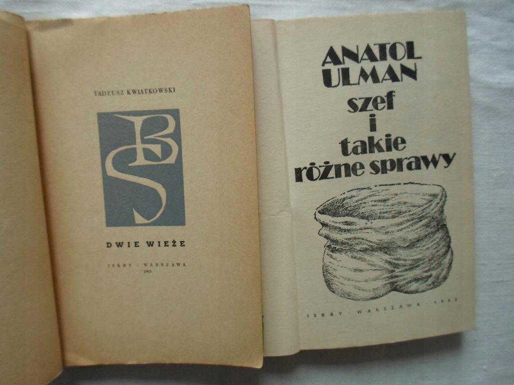 Szef i takie różne sprawy a. Ulman Allegro.pl Cena: 3