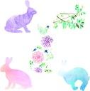 Kolorowa naklejka zajączki zające farby pastele