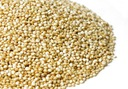 Komosa ryżowa aż 100g od Skworcu