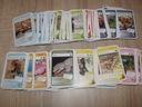 Karty Super Zwierzaki 10 szt za 1zł - dużo kart