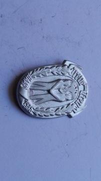 Odznaka Treue um Treue - Saar 1935