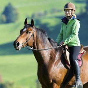 Odzież jeździecka (do jazdy konnej) Allegro.pl