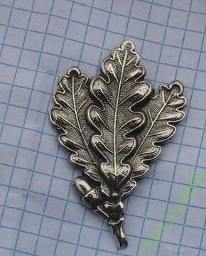 Pruský odznak (17)