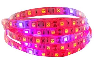 LED svetelné Pásy 5050 300 RAST rast rastlín 12V IP65 1 m