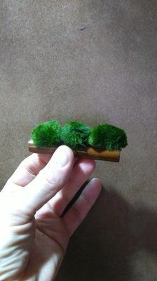 Seaweed на бамбуковой трубке - готова instagram