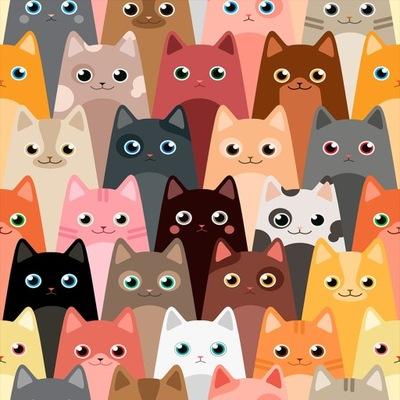 Tapeta Wzór Dla Dzieci Zdjęcia Kotów Koty Kotki 6935876618 Allegropl
