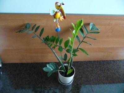 Dekorácia do záhrady - Dekorácie Funny dekoratívne gadget - Bird