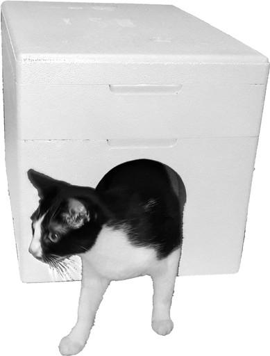 Domek dla kota - pudełko styropianowe 4cm ścianka